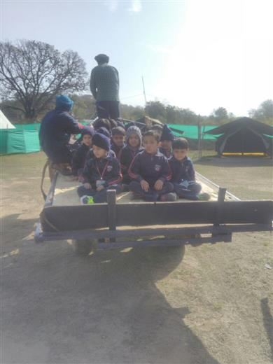 Visit to willow the wisp | AKSIPS 125 Chandigarh